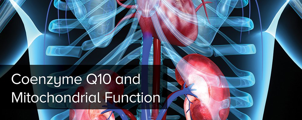 Coenzyme Q10 (CoQ10) and Mitochondrial Function
