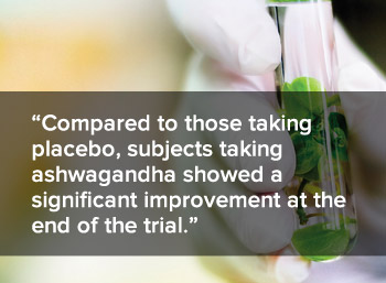 Compared to those taking placebo, subjects taking ashwagandha showed a significant improvement at the end of the trial