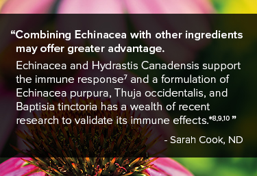 Combining Echinacea with other ingredients may offer greater advantage
