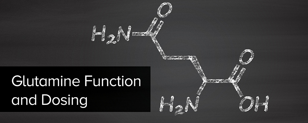 Glutamine Function and Dosing