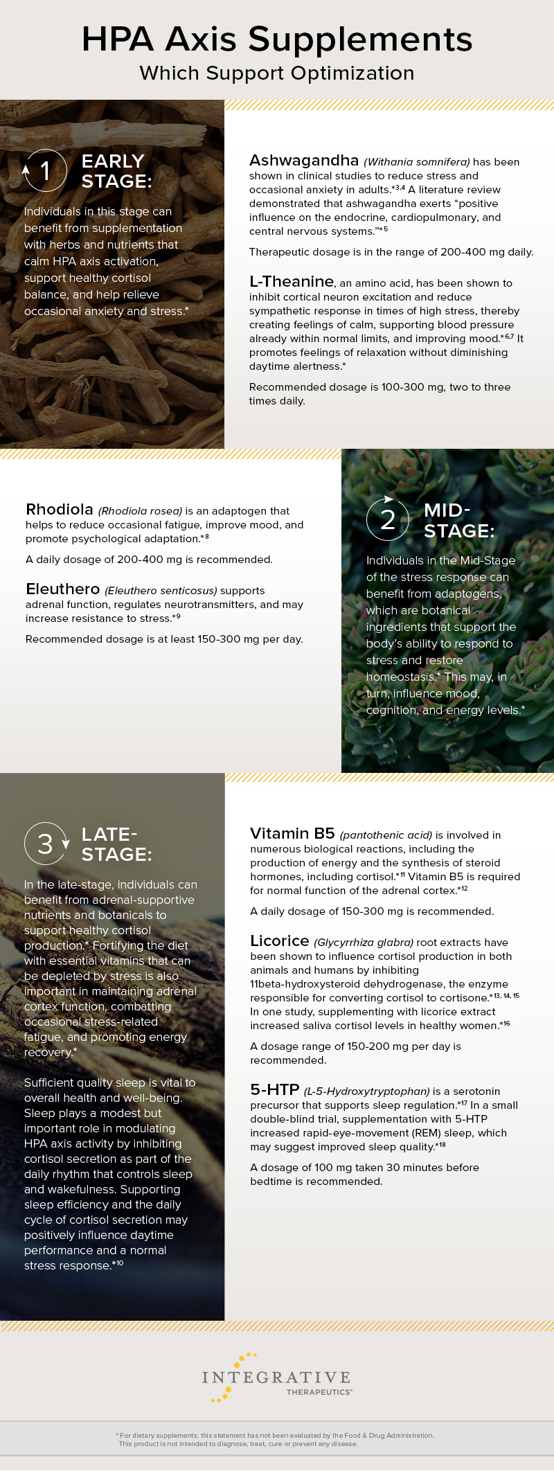 Chart of the Three Stages of Stress Response and HPA Axis Supplements to Support Optimization