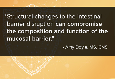 Structural changes to the intestinal barrier disruption can compromise the composition and function of the mucosal barrier.