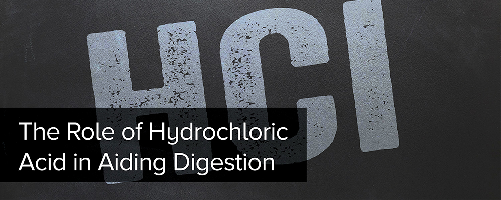 The Role of Hydrochloric Acid in Aiding Digestion