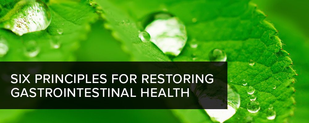 6 Principles for Restoring Gastrointestinal Health