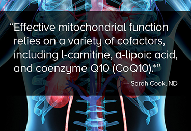 Effective mitochondrial function relies on a variety of cofactors, including l-carnitine, α-lipoic acid, and coenzyme Q10 (CoQ10).