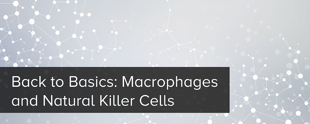 Back to Basics: Macrophages and Natural Killer Cells