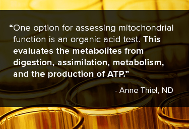 One option for assessing mitochondrial function is an organic acid test. This evaluates the metabolites from digestion, assimilation, metabolism, and the production of ATP.
