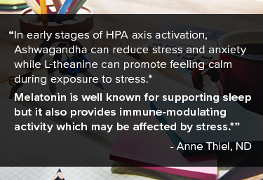 Challenges of stress management can occur in many stages. In early stages of HPA axis activation, Ashwagandha can reduce stress and anxiety while L-theanine can promote feeling calm during exposure to stress.* In the later stages of the stress response, B vitamins are necessary for all cells to generate energy.
