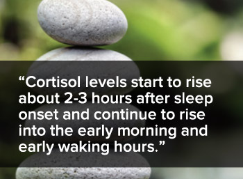 Cortisol levels start to rise about 2-3 hours after sleep onset and continue to rise into the early morning and waking hours.