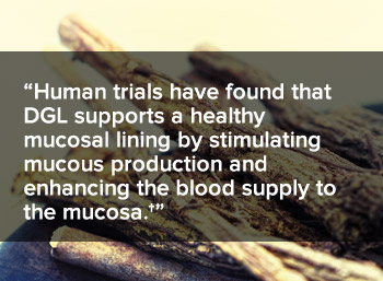 Human trials have found that DGL supports a healthy mucosal lining by stimulating mucous production and enhancing the blood supply to the mucosa