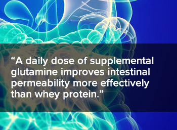A daily dose of supplemental glutamine improves intestinal permeability more effectively than whey protein