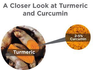 Turmeric vs. Curcuminoids